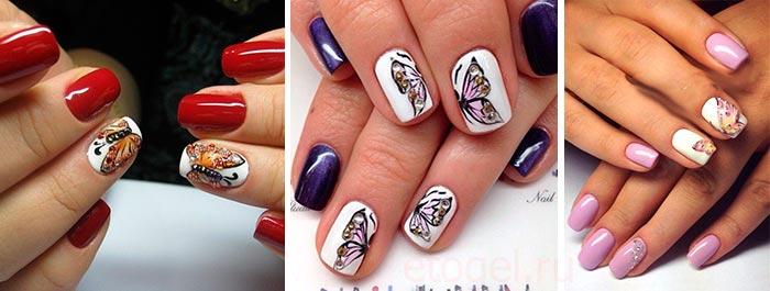 Примеры рисунков бабочек